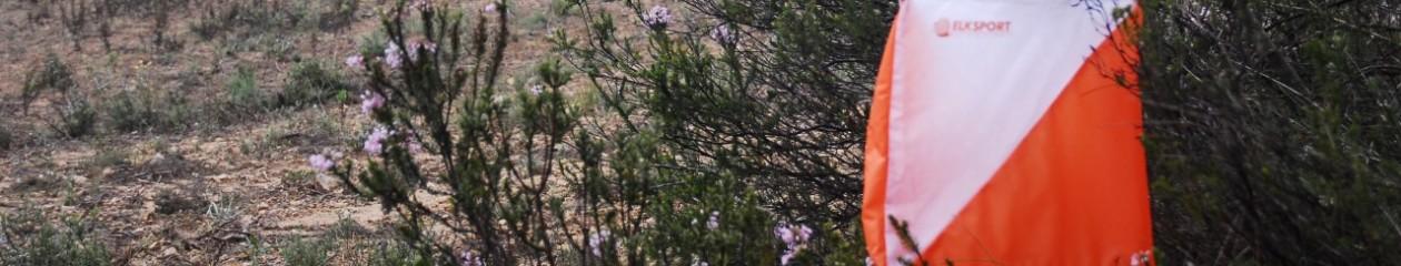 vallmoranta
